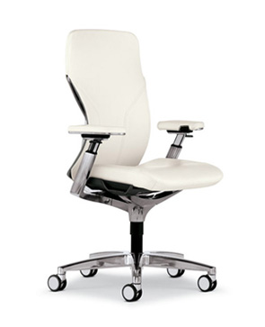 Executive Ergonomic Conference Room And Guest Seating