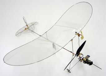 Microflyer